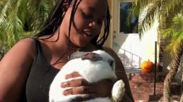 6 Things to Know: Owner Reunites With Bunny After Dorian