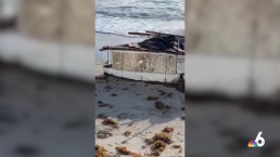 Makeshift Boat Arrives on Sunny Isles Beach
