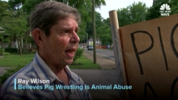 Group Protesting Pig Wrestling Competition