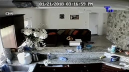 Video Shows Burglars in Pembroke Pines Home