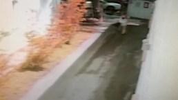 Miami Beach Armed Robbery Caught on Camera