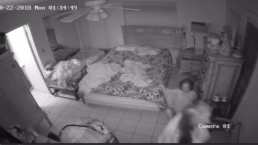 Caregiver Kicks 93-Year Old Woman in Surveillance Video