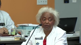 Brenda Snipes on Broward Recount, Possibly Moving On