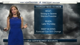 NBC 6 Web Weather - December 19th