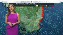 NBC 6 Web Weather - February 21st