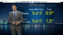 NBC 6 Web Weather - August 17th Evening
