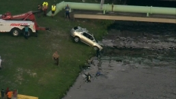 Driver In Critical Condition After Accident Sends Car Into Canal