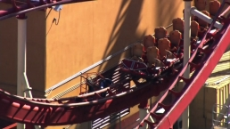 Riders Rescued After Universal Orlando Roller Coaster Gets Stuck