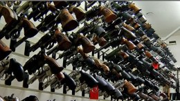 Hackers May Have Names of Thousands of Florida Gun Owners