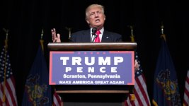 Trump's Reddit Q&A: Appeals to Youth, Sanders Fans