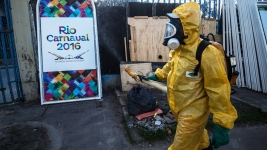 Brazil Sprays to Curb Zika as Fears Threaten Carnival