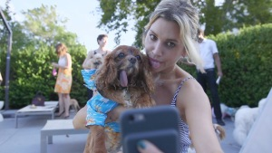 The Luxurious Lifestyle of New York's Poshest Pooches