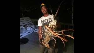 Monster Lobster Caught in Bermuda After Hurricane Nicole