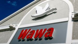 Police: Alligator Dumped Inside Florida Wawa Store