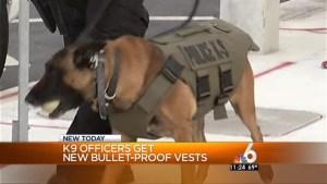 Miami PD K9 Officers Get Stabproof, Bulletproof Vests