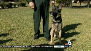 C. Fla. K-9  Deputy Shot on Duty Honored