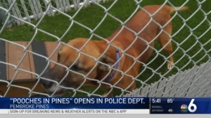 Pooches in Pines Opens in Police Department