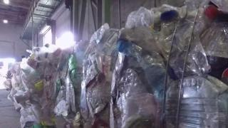 [MI] Recycling Habits Put to the Test