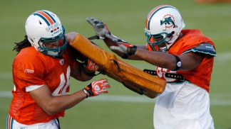 They're Back! Dolphins Open Training Camp