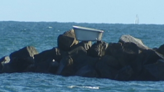 Mystery Bathtub on Government Cut Jetty
