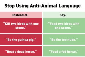Is 'Bring Home the Bacon' Anti-Animal Language? PETA Says So