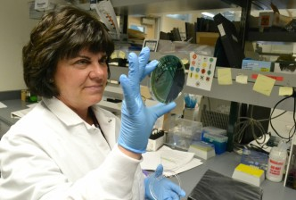 Genetic Sleuthing Bolsters Food Poisoning Searches<br /><br />