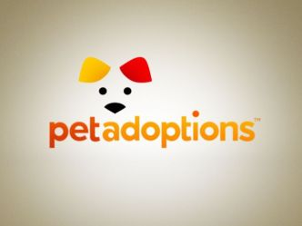 "Pet Adoptions: ""Rocky"""