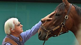 American Pharoah Gallops in Kentucky Ahead of Belmont