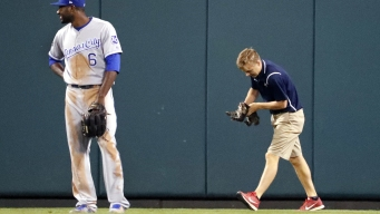 Rally Cat: Feline on Field Sets Up Cardinals' Grand Slam