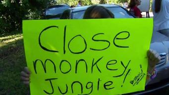 Animal Rights Group Wants Monkey Jungle to Close