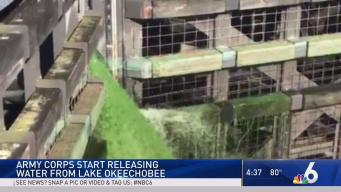 Army Corps Resumes Flushing Water From Lake Okeechobee