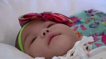 Baby Evacuated From P.R. After Hurricane in Medical Limbo