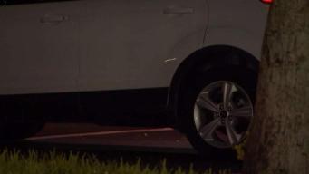 Boy Dies Inside Hot Parked Car in Pembroke Pines