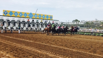 2 Horses Die, Another Injured in 1 Day at Del Mar Racetrack