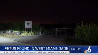 Fetus Found in West Miami-Dade