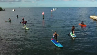 Florida Witches Ditch Broomsticks for Paddleboards