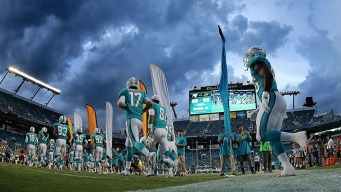 2015 Dolphins Season Preview
