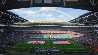 Dolphins Heading Back to London in 2017