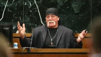 Hulk Hogan Seeks Rematch With Gawker