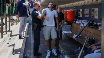 Fan Plunges Into Yankees Dugout, 'Freaks Out' Manager Girardi