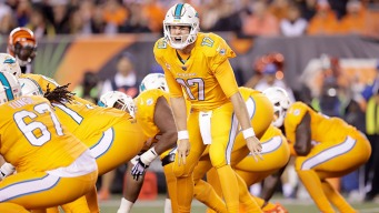 Dolphins Fall to 1-3 With Loss in Cincinnati