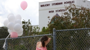 MSD Public Safety Commission Recommends Arming Teachers