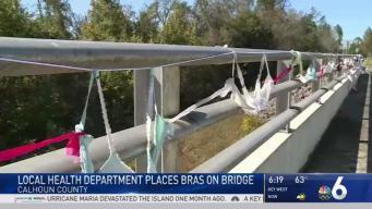 Health Department in Florida Decorates Bridge With Bras