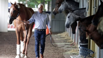 Racing's Elite Advise Young Horsemen to Stay Humble