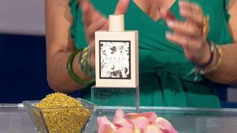 Kika Rocha Talks Fall Fragrances