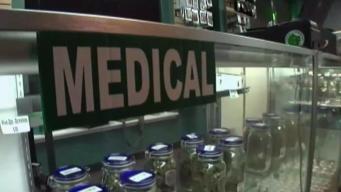 State Awards Medical Marijuana License to Homestead Nursery