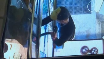 Man Steals Python From Pet Store by Stuffing Snake in Pants