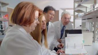 NSU Innovations in Breast Cancer Research