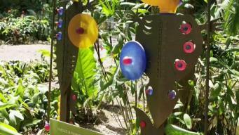 New Exhibit Means More Family Fun at Flamingo Gardens