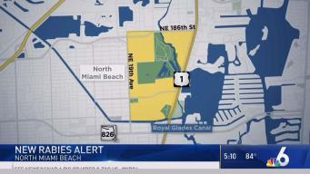 New Rabies Alert in North Miami Beach